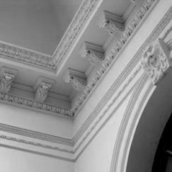 Ornate Ceiling Cornices